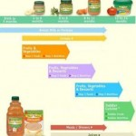 Learn About the Introduction of Baby Food Chart