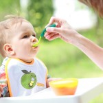 recommended baby food organic or Inorganic